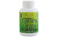Barley Grass Capsules - Lifestream - 60Cap