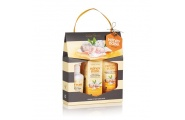 Gift Set- Honey Babe